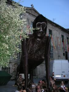 Majmuni 2003. godina